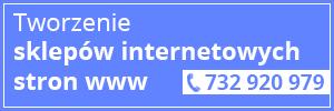 Tworzenie sklepów internetowych, stron www