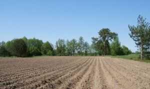 O-ziemi-rolnej-na-Radzie-Ministrow-komunikat-CIR_640x380-2